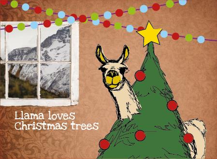 Llama loves Christmas trees